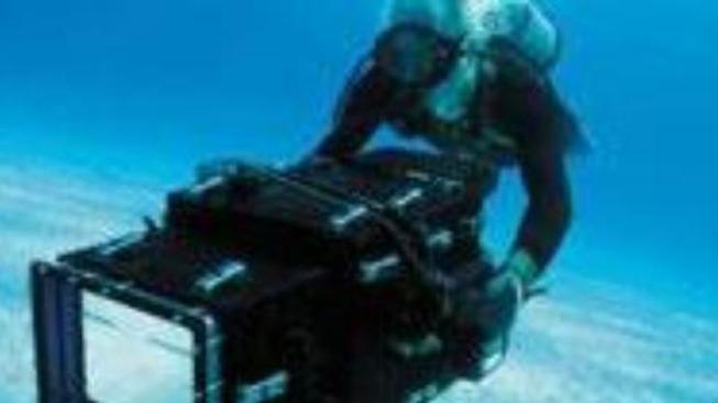 O čem je film Velké podmořské dobrodružství 3D