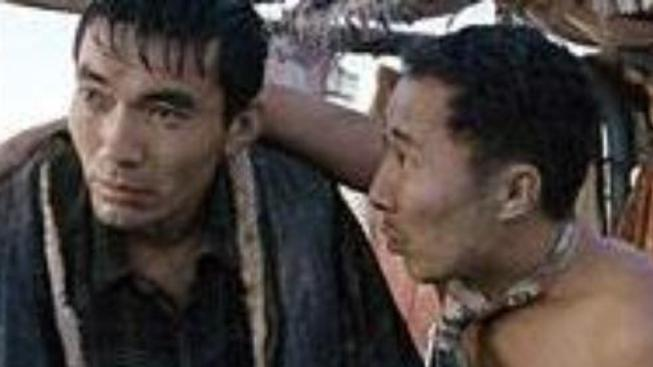 O čem je film Tulpan