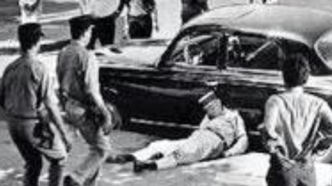Alžírská válka ve filmu