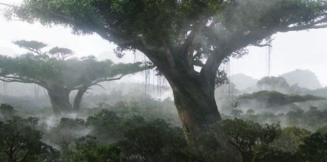 Avatar: Strom života