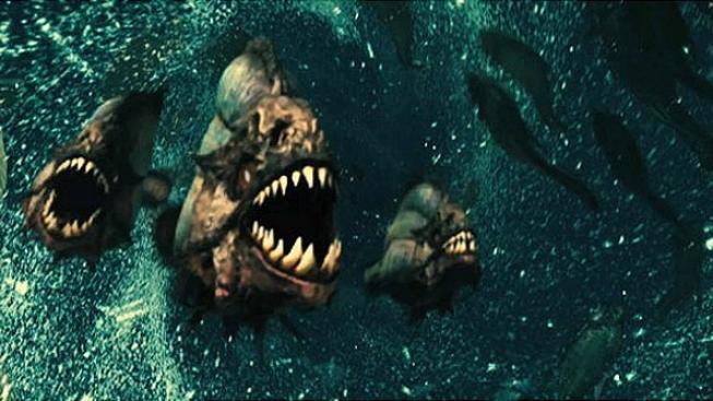 Tvůrci snímku Piranha 3D plánují pokračování