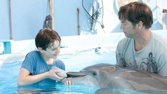 Rodinný film Můj přítel delfín byl jedničkou v amerických kinech
