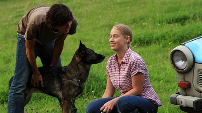 Film Láska je láska vede v návštěvnosti českých kin