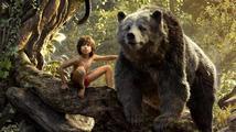 Kniha džunglí - recenze
