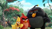 Angry Birds ve filmu - recenze animáku se slavnými ptáky