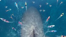 Jason Statham se v The Meg střetne s gigantickým žralokem