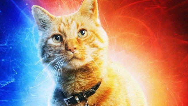 Většina záběrů kočky z Captain Marvel je kompletně digitálních