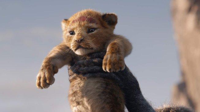 lví král 4