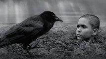 Recenze: Nabarvené ptáče – krutá nádhera